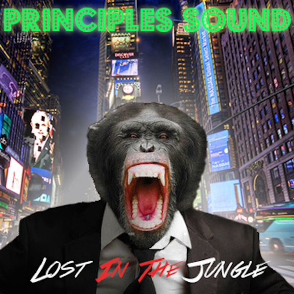 PRINCIPLES SOUND – LOST IN THE JUNGLE